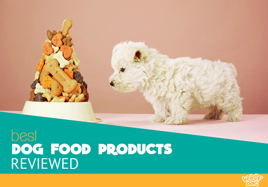 Dog Food Products and Nutrition Tips