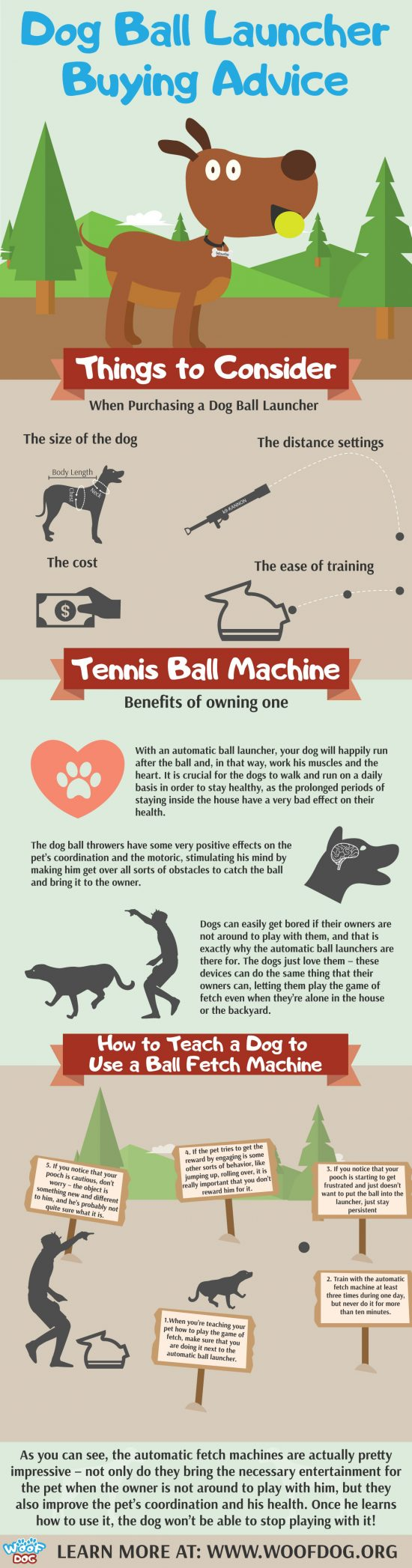 Infographic with Things to consider when buying dog ball throwing machine