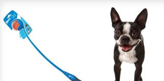 chuckit ball launcher for dogs reviews