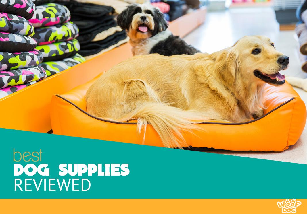 best dog supplies reviewed