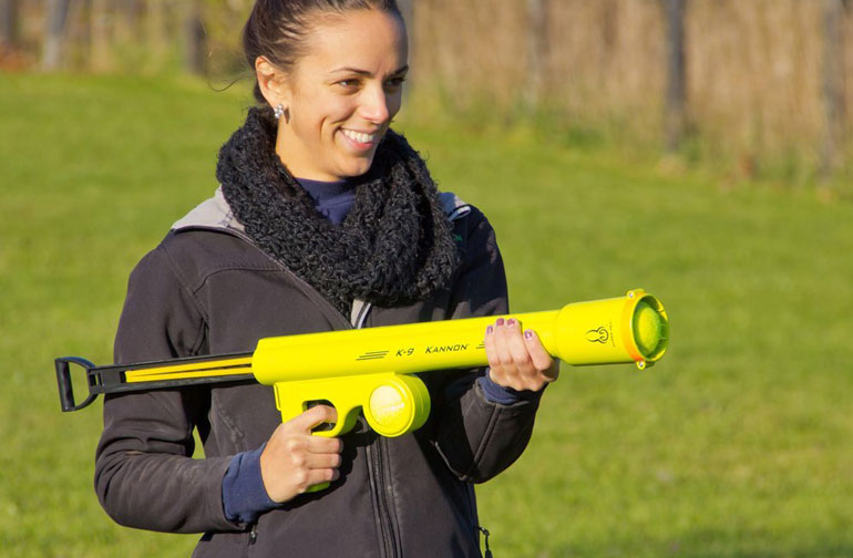 7 best automatic ball throwers for dogs reviews buyer s guide