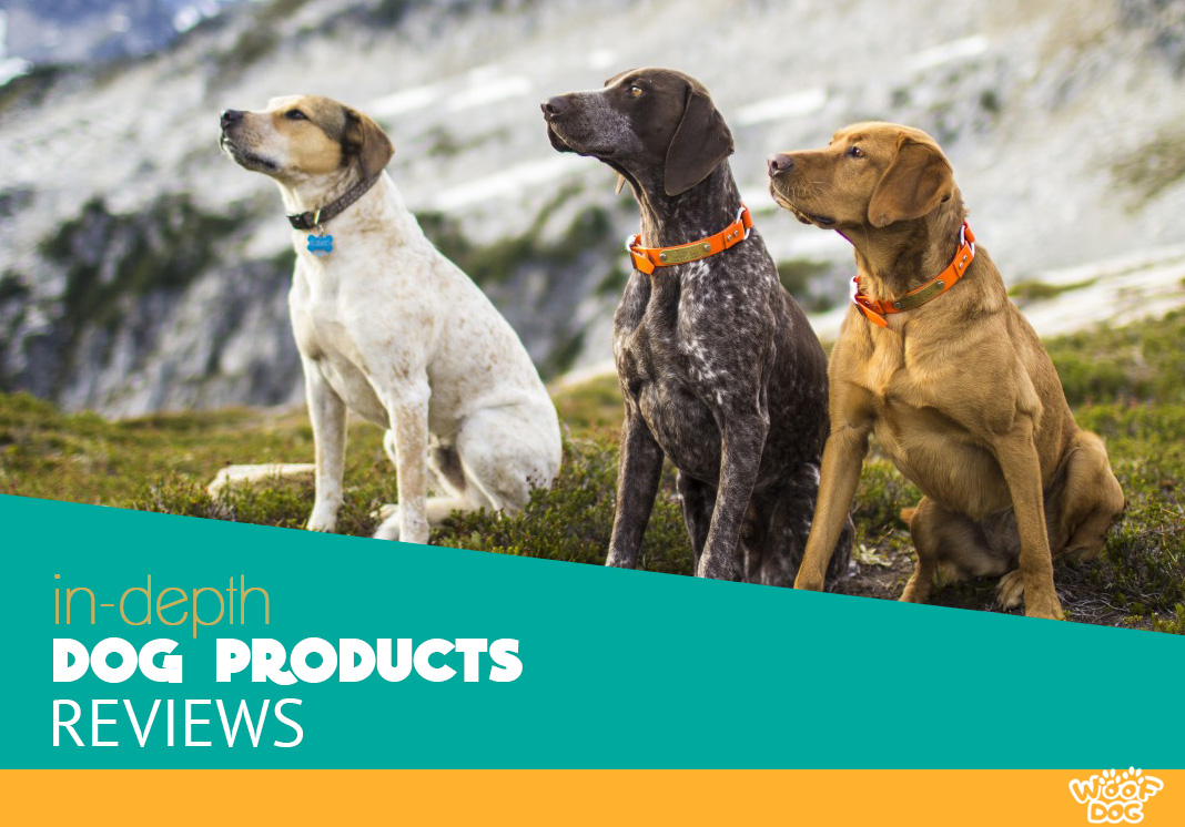 in depth dog products reviews