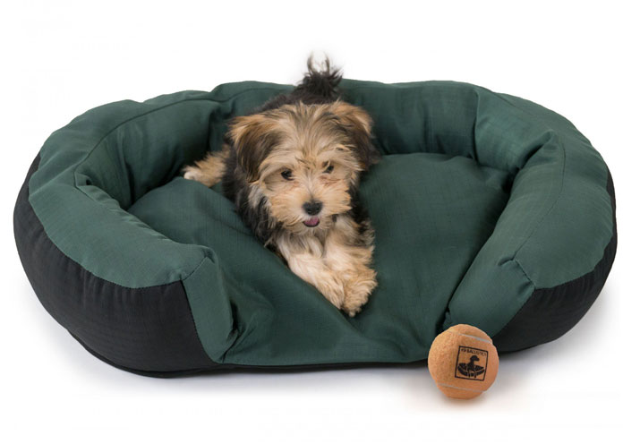 small puppy lying on Green TUFF Bed