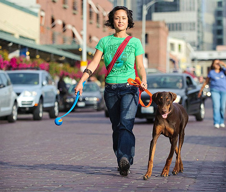 woman walking a dog and holding chuckit! thrower