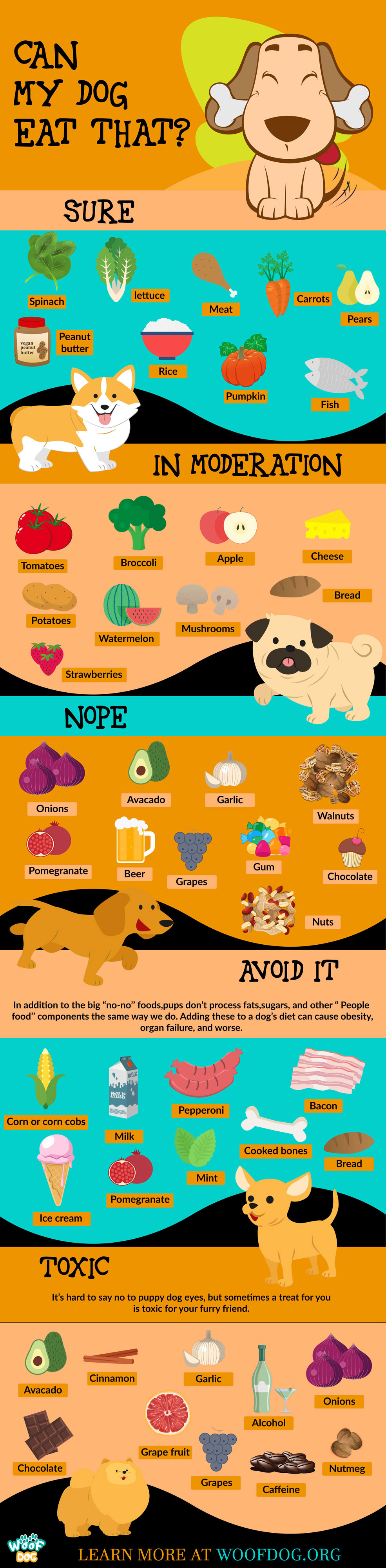 List Of Dangerous Foods For Dogs