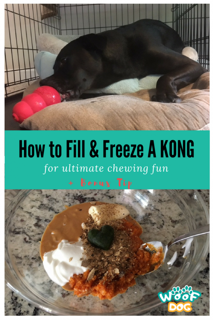 How To Fill & Freeze A KONG for ultimate chewing fun + Bonus Tip