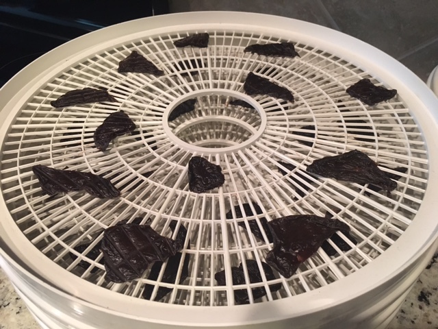 The finished treats after 10 hours in the dehydrator