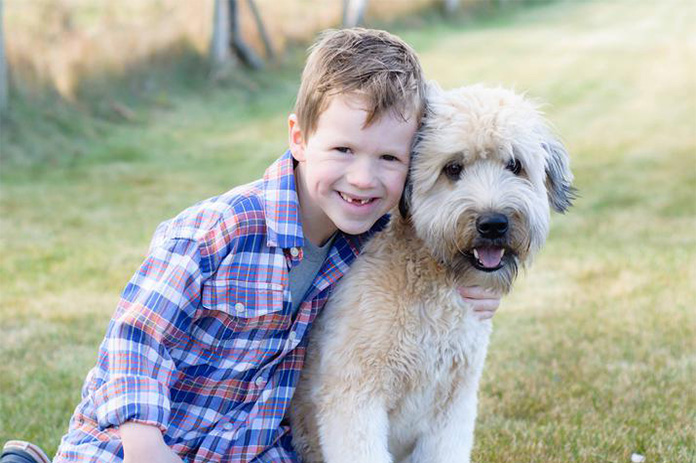 Boy hugging a Soft Coated Wheaten Terrier