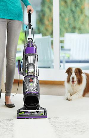 vacuum cleaner to clean dog fur