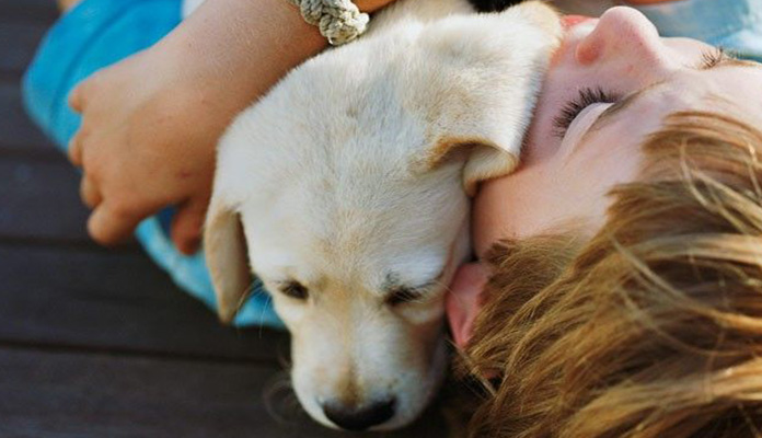 Girl hugging a golden puppy