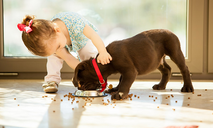 little girl feeding her puppy