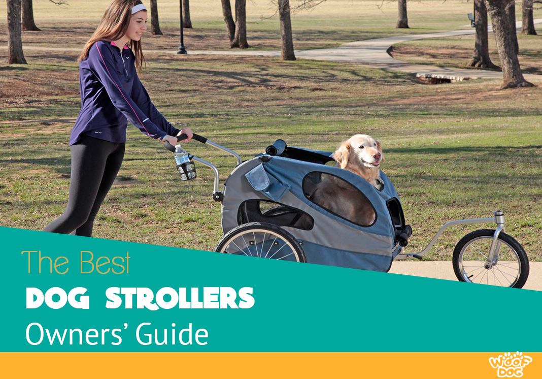 The Highest Rated Strollers for Dogs you can buy in 2017 - Buyer's Guide