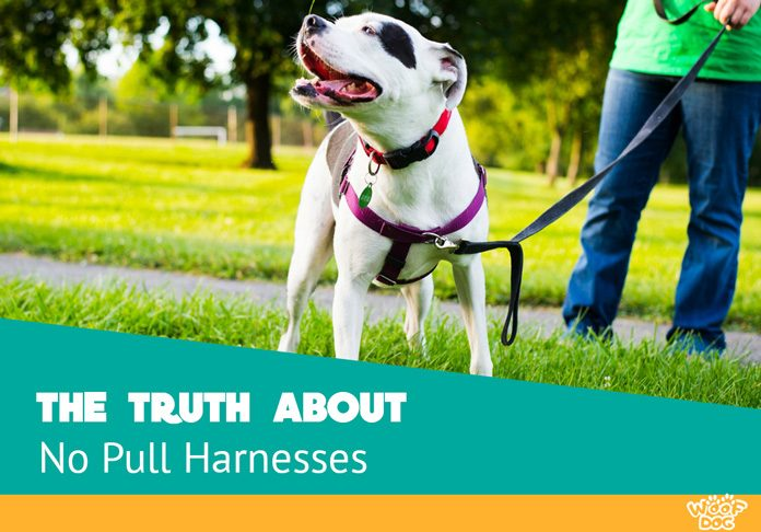 the truth about no pull harnesses