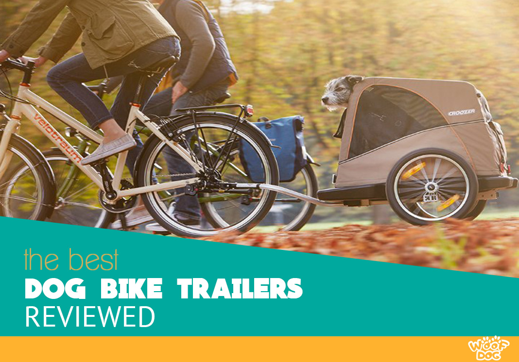Our Highest rated bike trailers for dogs