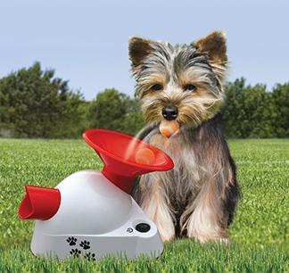 Pup and Gotcha Talking Machine