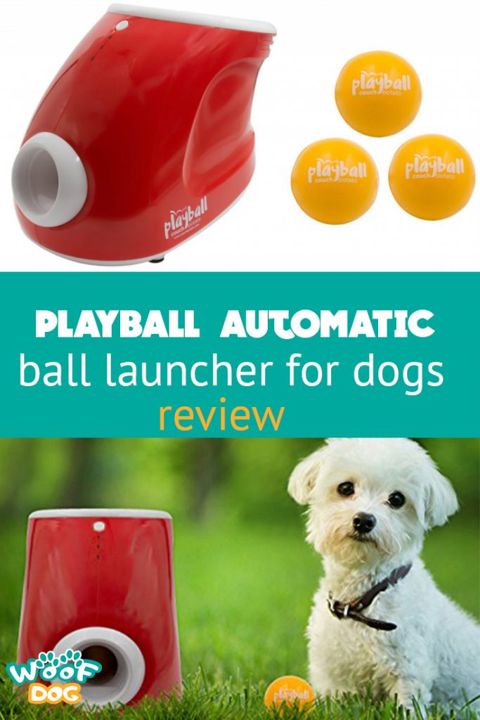 pin it Playball Review