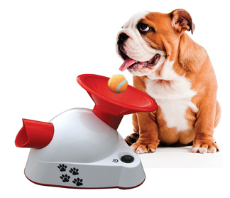 Image of pup with Gotch talking product