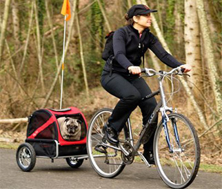 woman riding a bike with pup