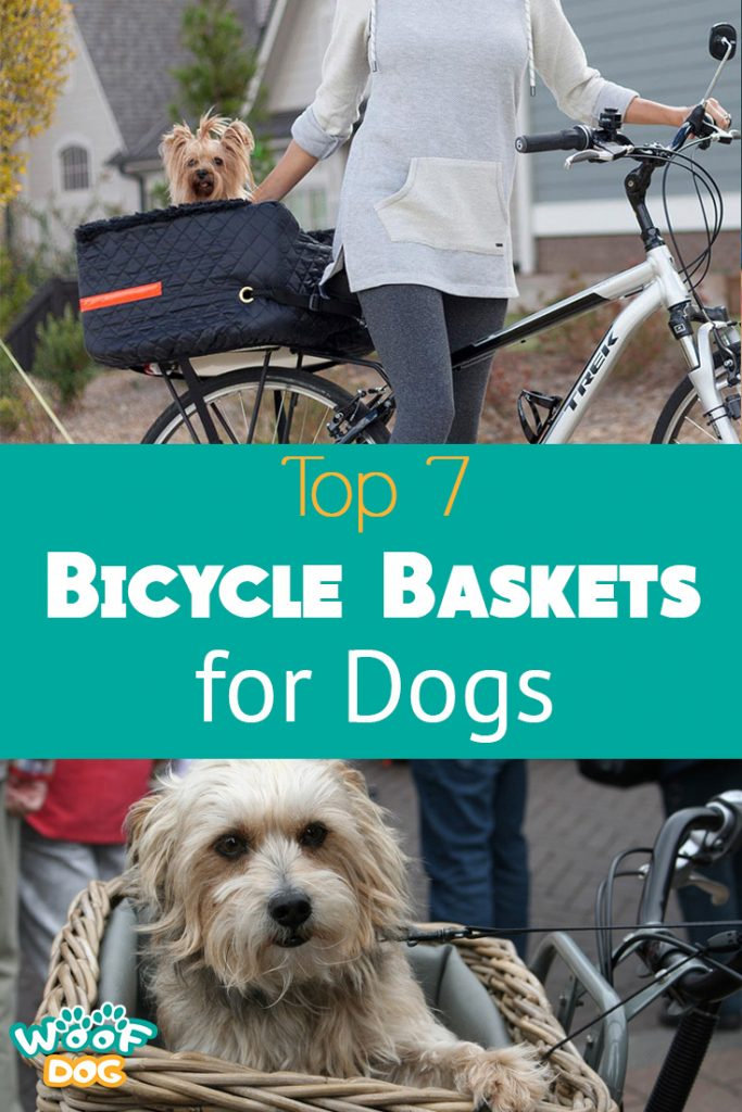 pinterest graphic for bicycle dog carier