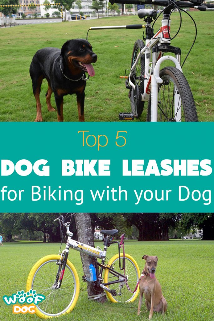 best bike leashes for dogs pinterest