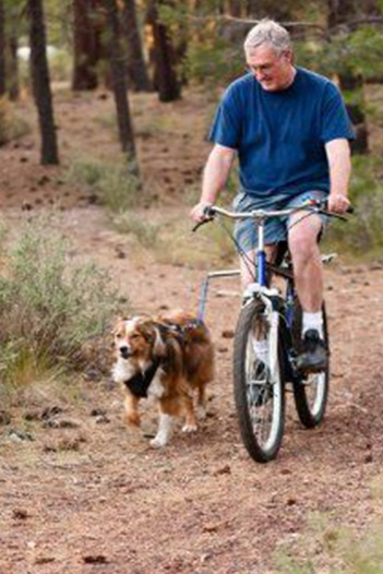 riding bike with dog in the wood