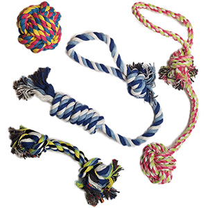 Image of 4 different size of rope toys