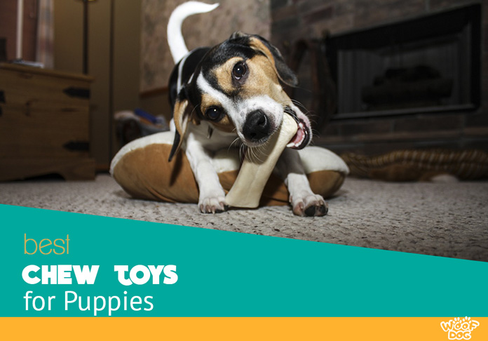 Best Chew And Teething Toys For Puppies Woof Dog