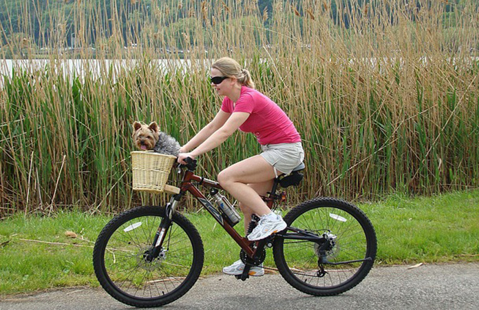 woman biking with a dog