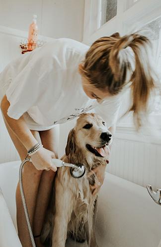 Girl gives dog a bath