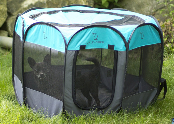 Black dog in Playpen on the grass