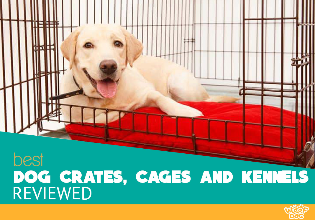 11 Best Dog Crates and Kennels for 2018 - The Definitive Guide