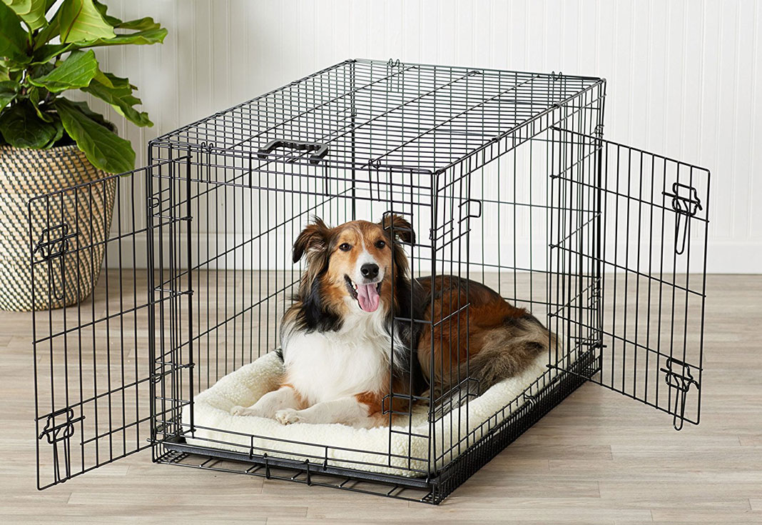 kennel made from steel with a large pet inside of it