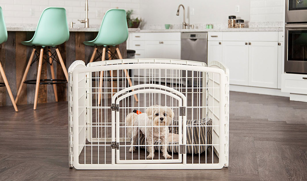 smaller playpen designed for smaller dogs