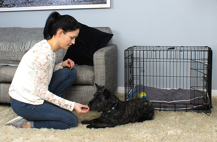 Puppy training with a dog crate