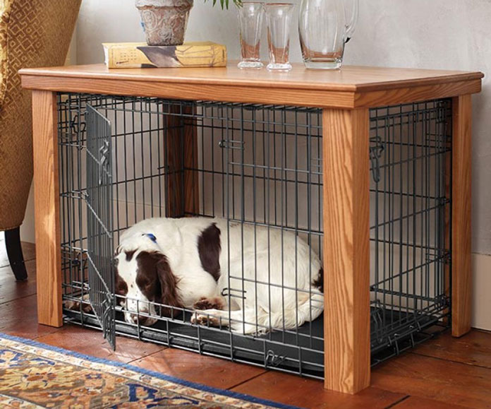 White dog in crate