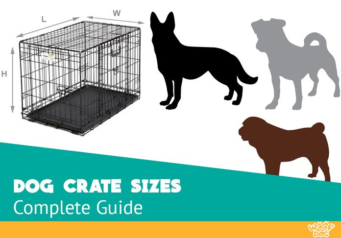 Choosing The Right Dog Crate Size Definitive Guide