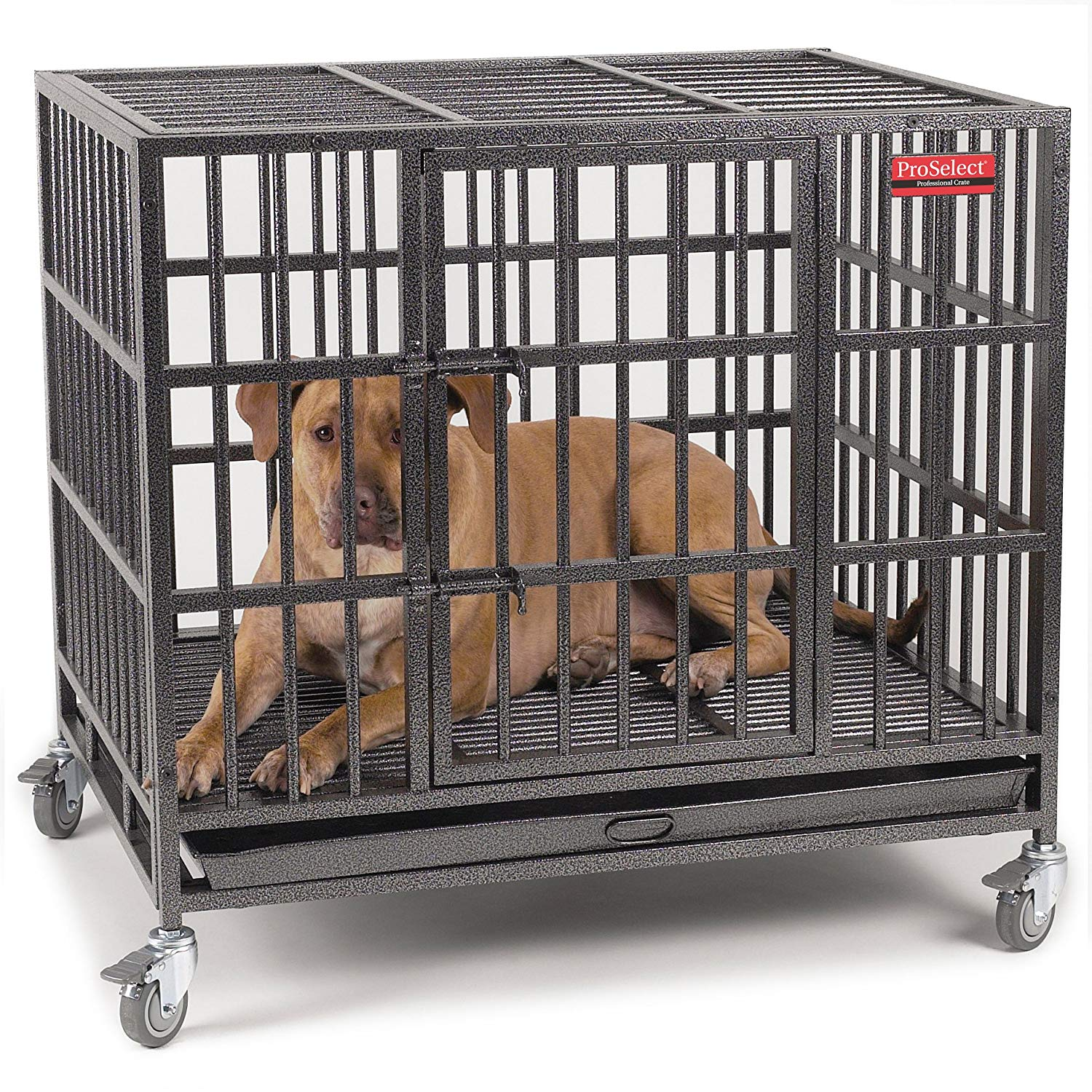 ProSelect empire cages for dogs