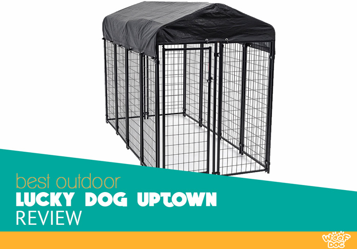 Lucky Dog Uptown Welded Wire Crate Review | Woof Dog