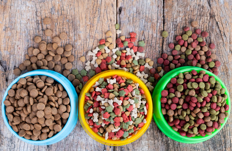 image of different dog food for weight loss