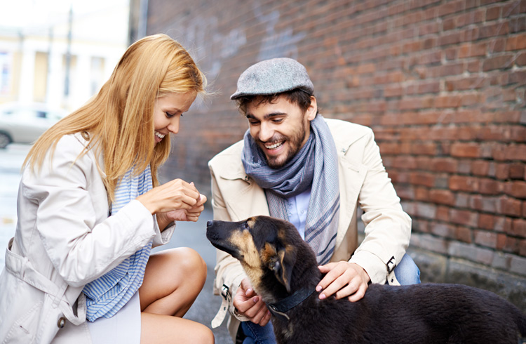 image of woman and man feeding dog