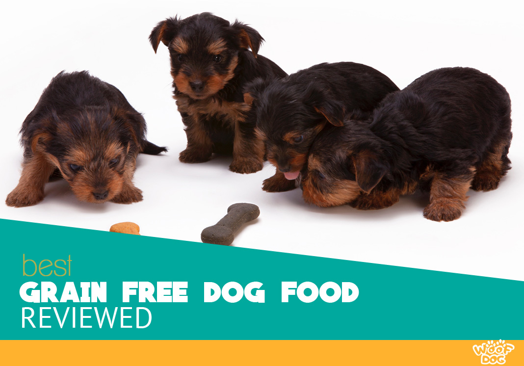 Featured image of four black puppys and delicious food