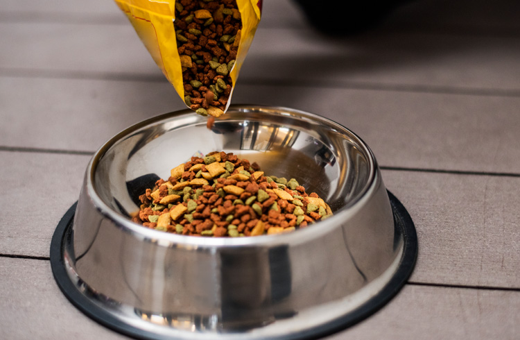 Image of bowl full of dry dog food