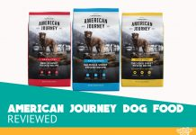 Featured image of american journey dog food review 2