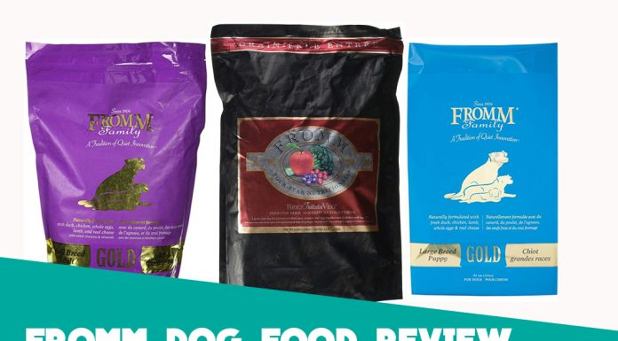 Fromm Dog Food Review - Brand Overview for 2019