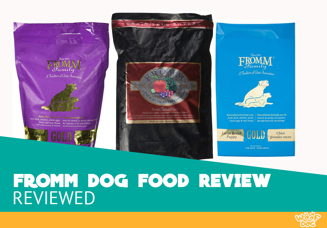 Featured image of fromm dog food review