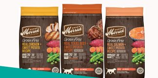 Featured image of merrick dog food review
