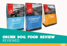 Featured image of orijen dog food review