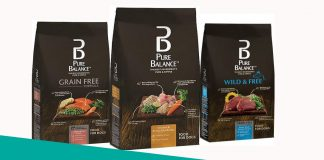 Featured image of pure balance dog food review