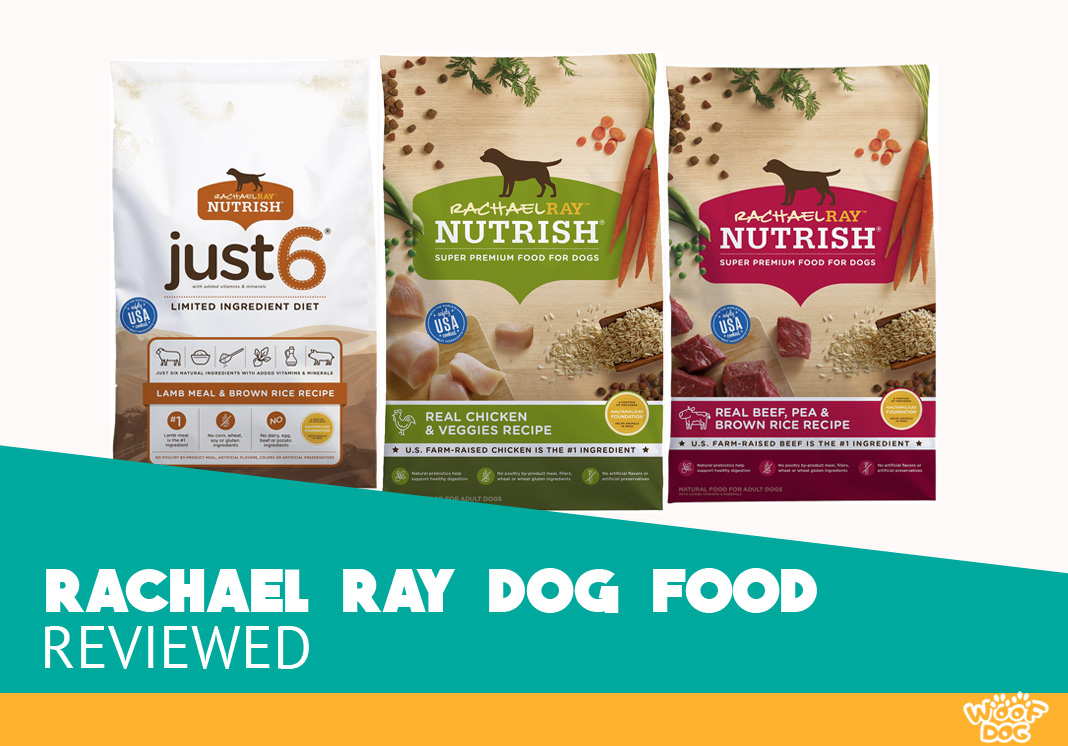 Featured image of rachael ray dog food review