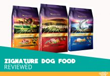 Featured image of zignature dog food review